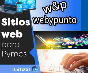 publicidad-webypunto-300x250
