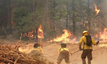 Bomberos de Valparaíso priorizará incendios por deuda de Onemi