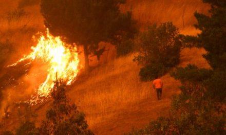 Incendio de Empedrado: Autoridades evacuan preventivamente a los vecinos