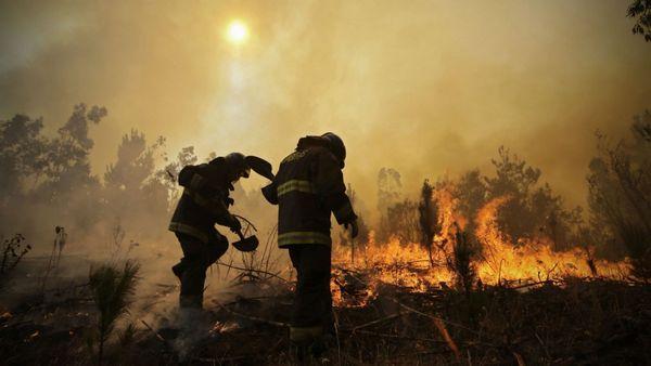 6 muertos en los peores incendios forestales en la historia de Chile