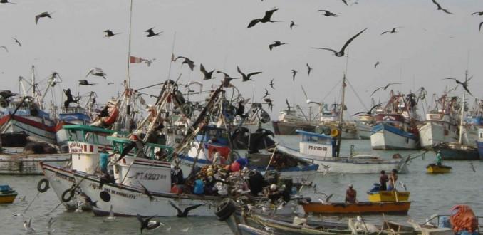 Nuevas boletas de pesqueras: políticos habrían recibido más de 400 millones de pesos