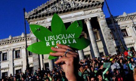 Uruguay comienza oficialmente a vender marihuana de manera regulada en farmacias