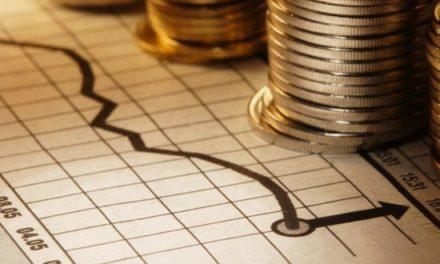 El modelo económico y el papel del Estado