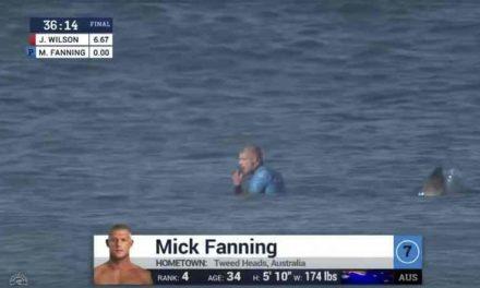 Estaba en su tabla de surf, lo atacó un tiburón, recordó un video de YouTube y salvó su vida