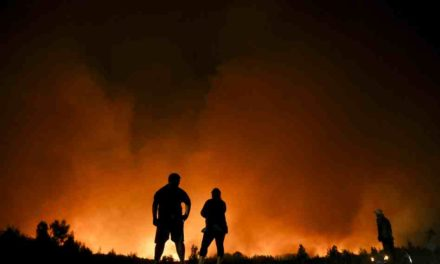 ¿Estamos mejor preparados para enfrentar los incendios forestales?