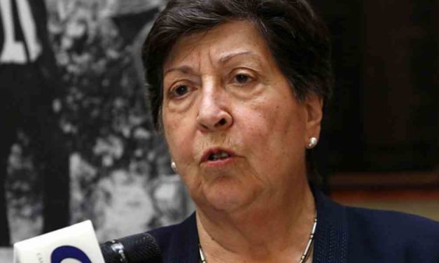 """Carmen Frei (DC): """"No podemos ser un partido que funcione en cúpula"""""""