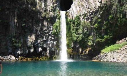 Concesión de Parques Naturales: La economía por sobre las áreas protegidas