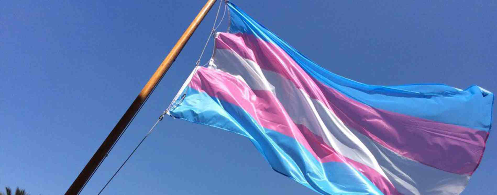 Activistas celebran Ley de Identidad de Género aprobada por el Tribunal Constitucional