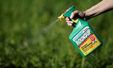 Justicia estadounidense falla contra Bayer por pesticida cancerígeno