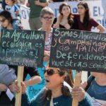 Estudio demuestra que un cuarto de los plaguicidas usados en Chile son altamente peligrosos